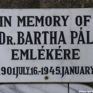 Bartha Pal Dr.
