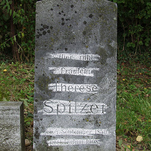 Spitzer Therese