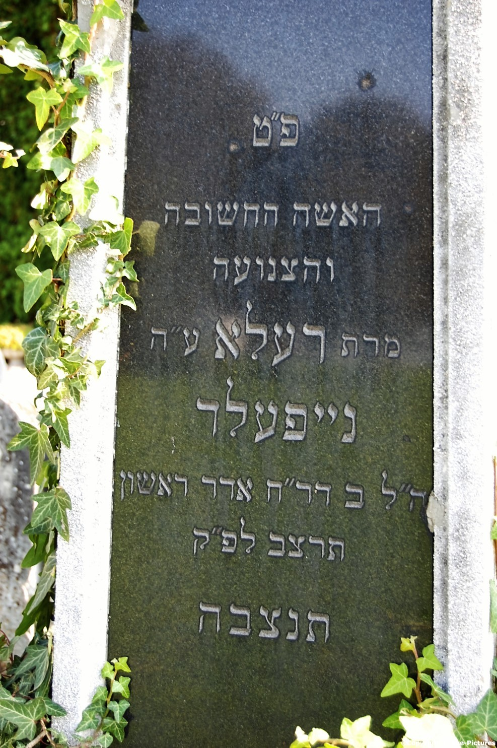 Tombstone Hebrew 58