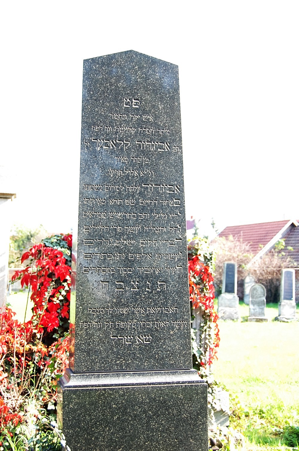 Tombstone Hebrew 8